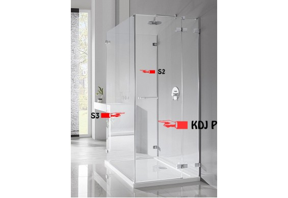 Стінка для душової кабіни Radaway Euphoria S3 100 (383036-01)